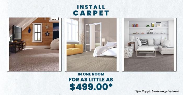 carpet-final